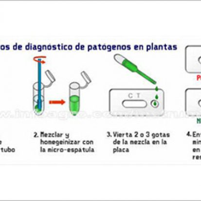 loewe_biochemica